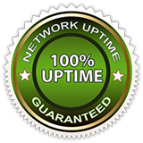 100% Network Uptime Guaranteed